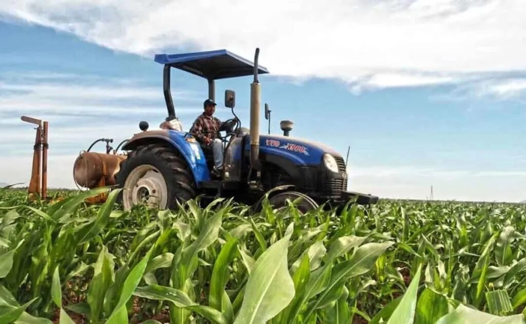 trabajos de agroindustria en el campo mexicano